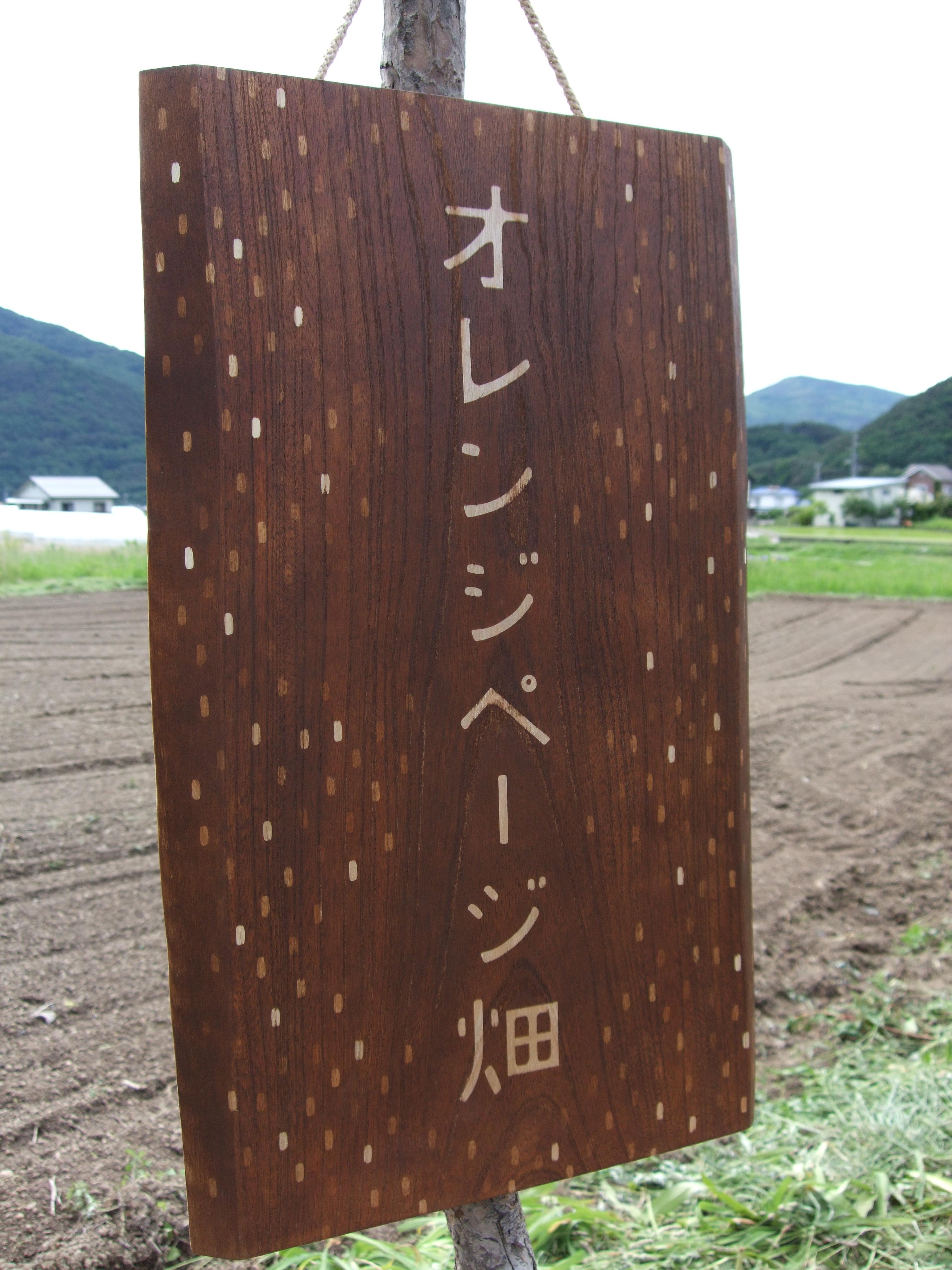 オレンジページ畑